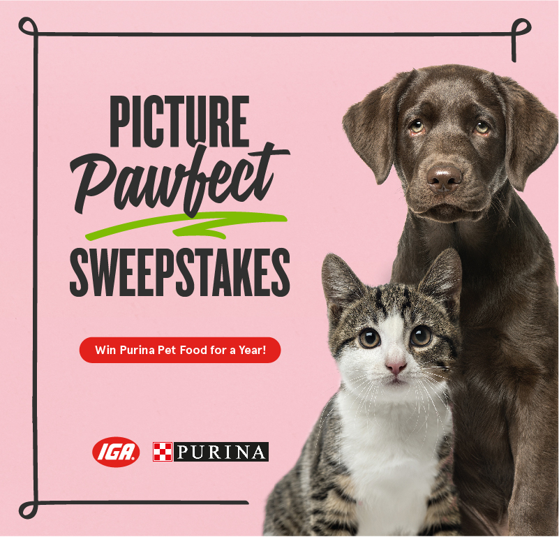 Enter the IGA and Purina Picture Pawfect Sweepstakes